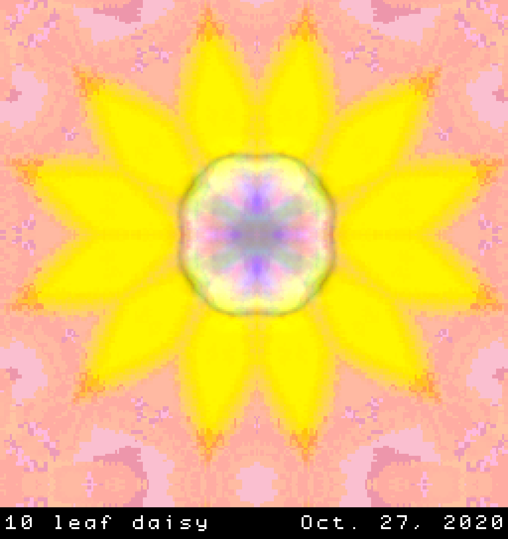 Daisy flower with ten leaf-s.png
