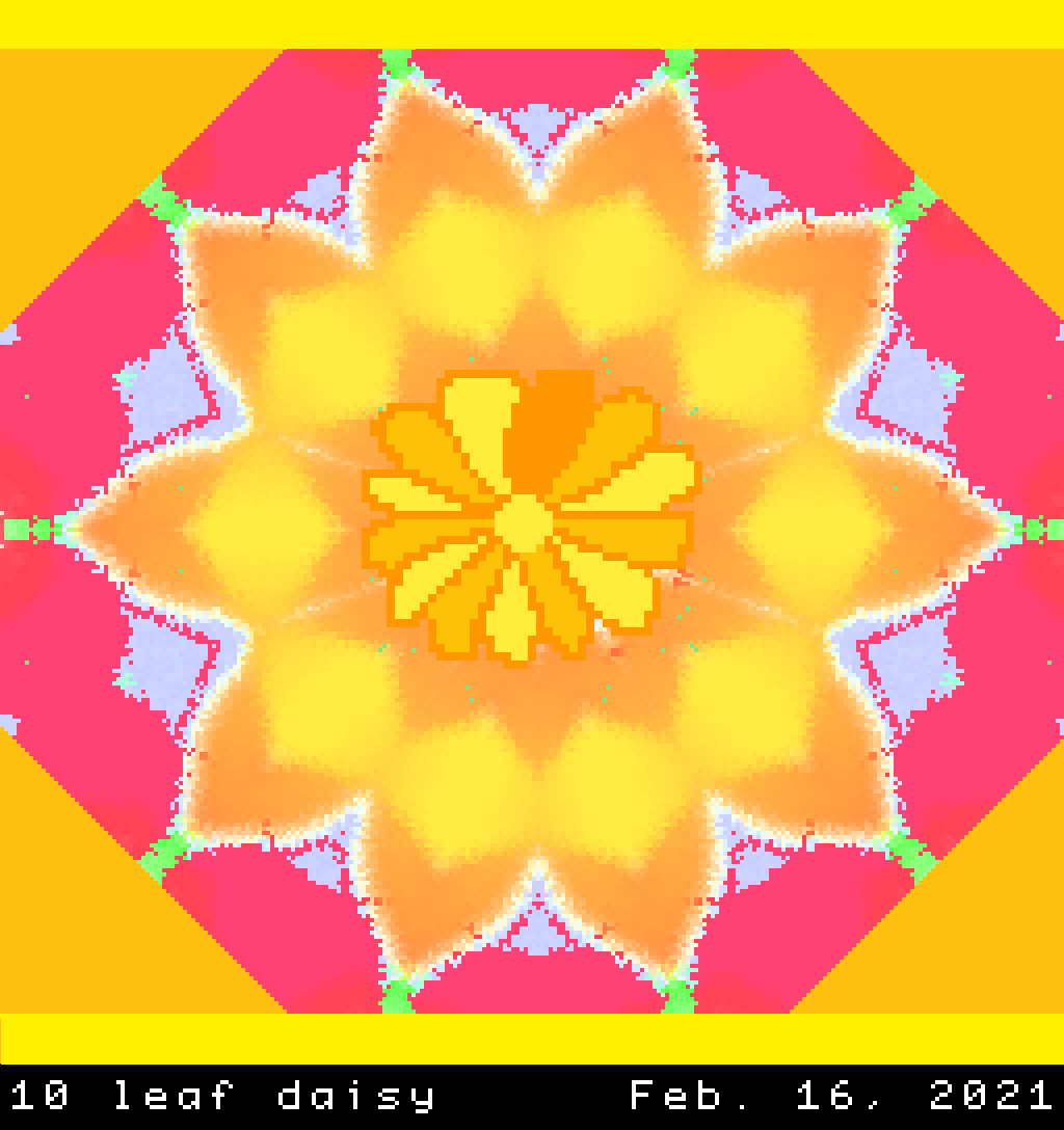 Daisy flower of a bright color and rays that are exactly ten, dear friend.png